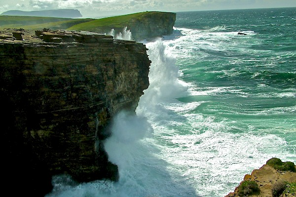 Orkney Cruise Sea Cliffs