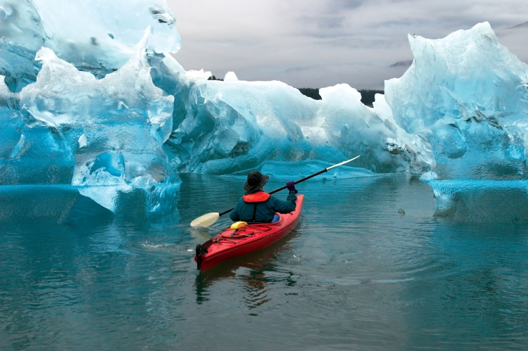 Cruise Kayaking Alaska Tongass