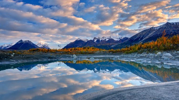 Alaska Cruise Denali National Park