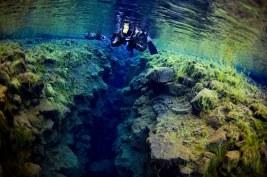Iceland Cruise Snorkelling